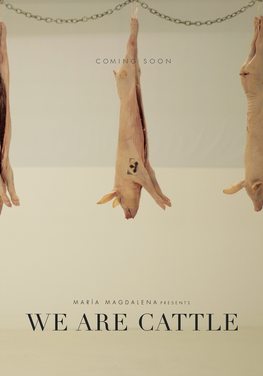 We are Cattle
